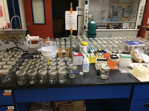 My lab station during sample processing