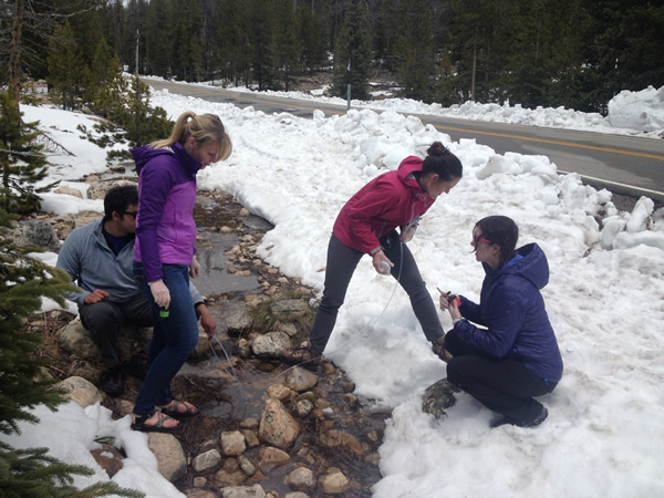 (From left to right) Brian, Hannah, Carrie, and Greta collecting overland flow samples in the Uintas to be tested for Mercury and organic carbon and organic matter.