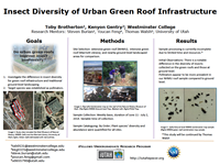 Insect Diversity of Urban Green Roof Infrastructure
