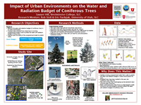 Impact of Urban Environments on the Water and Radiation Budget of Coniferous Trees