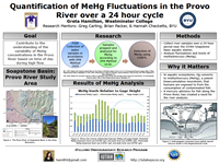 Quantification of MeHgFluctuations in the Provo River over a 24 hour cycle