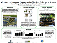 Microbes vs Nutrients: Understanding Nutrient Pollution in Streams