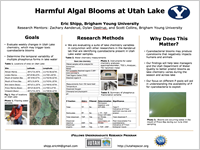 Harmful Algal Blooms at Utah Lake