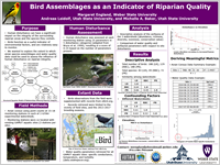 Bird Assemblages as an Indicator of Riparian Quality